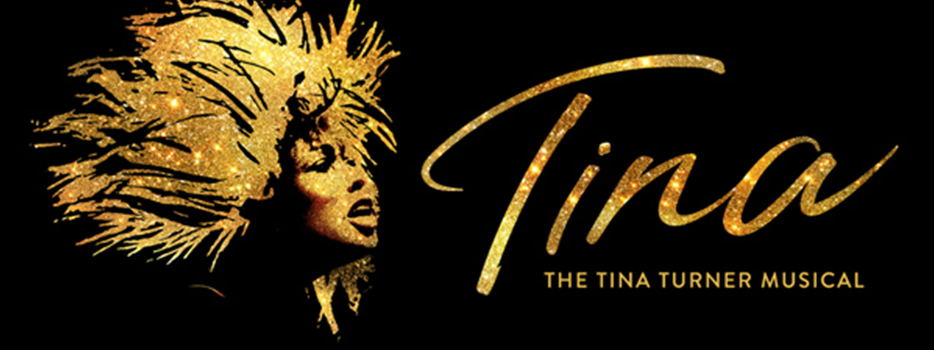 Tina Turner musical logo